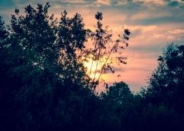 Sonnenuntergang Baggersee Schweinfurt #1